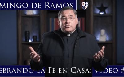 Domingo de Ramos   Celebrando la Fe en Casa: Video # 3